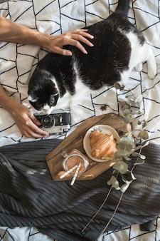 Manos de cultivo acariciando el gato y sosteniendo la cámara cerca de la comida del desayuno