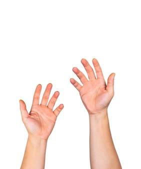 Manos desnudas masculinas con las palmas abiertas levantando contra el fondo blanco