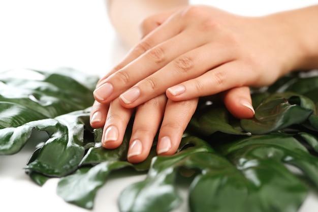 Manos femeninas en hojas. concepto de manicura