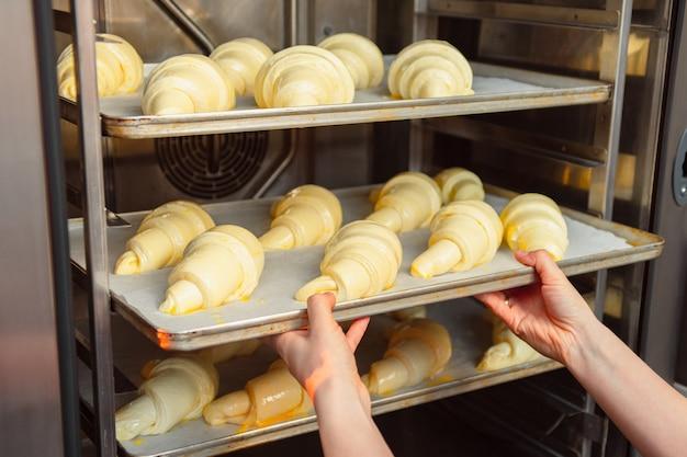 Las manos femeninas ponen la cocción en el horno sobre una lámina de metal.