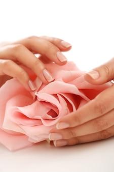 Manos femeninas con rosa rosa. concepto de feminidad