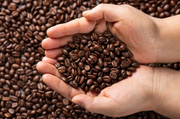 Manos laicas planas con granos de café