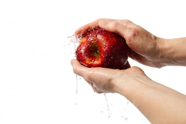 Las manos lavan una deliciosa manzana roja sobre un fondo blanco.