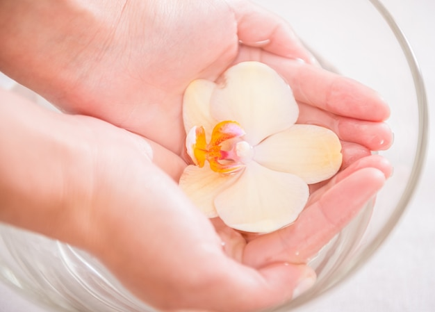 Manos de la mujer con el tazón de fuente de cristal de agua con la orquídea.