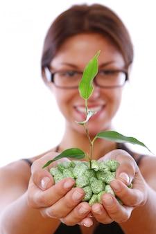 Manos de mujer tomando planta verde