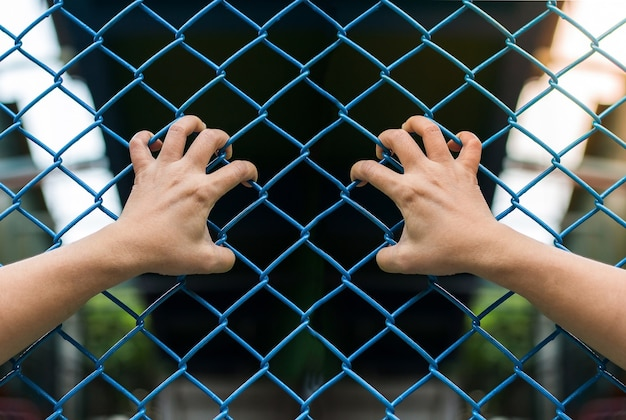 Manos de niña en la valla de alambre, concepto de libertad