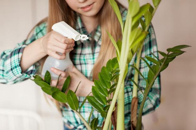 Las manos del niño que cuida plantas en casa, rociando la planta con agua limpia de una botella.