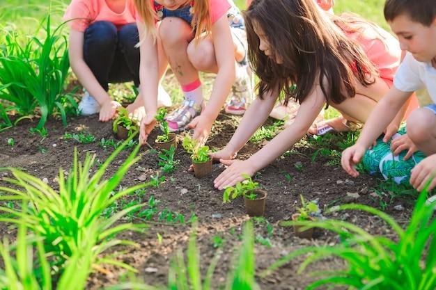 Las manos de los niños plantando árboles jóvenes en suelo negro juntos como el mundo
