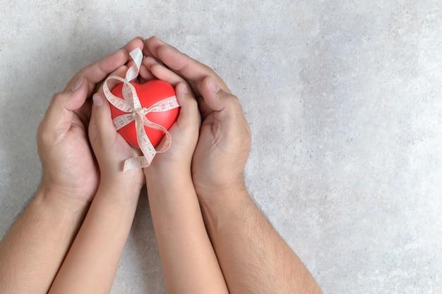 Manos del padre y del niño que llevan a cabo el corazón rojo