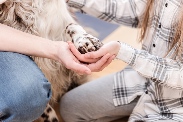 Manos y patas de todos los miembros de la familia. madre, hija y perro se toman de la mano