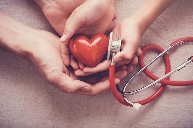 Manos sosteniendo corazón rojo con estetoscopio, salud del corazón, concepto de seguro de salud