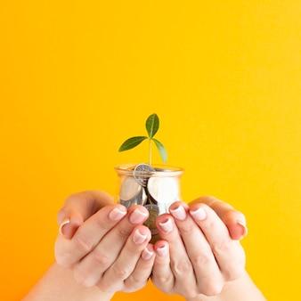 Manos sosteniendo frasco de monedas con planta