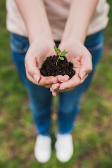 Manos sujetando planta pequeña