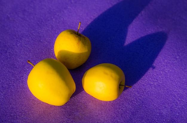 Manzanas amarillas sobre morado. grupo de manzana amarilla sobre un fondo morado. concepto de tendencias de color con espacio de copia