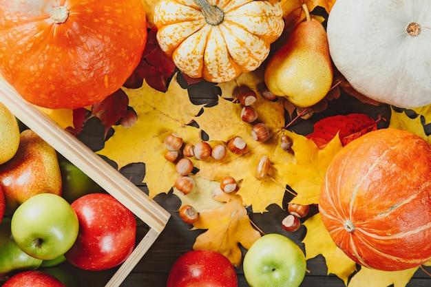 Manzanas maduras en una caja con calabazas, peras, avellanas y coloridas hojas de arce en madera oscura