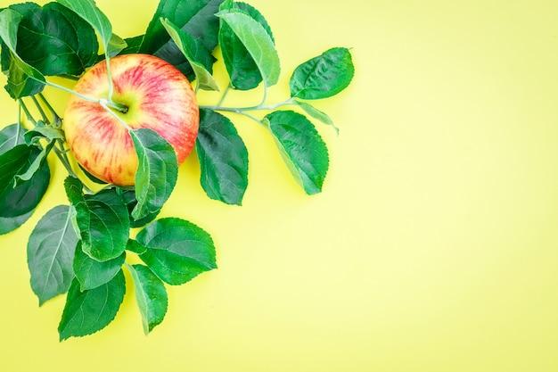 Manzanas maduras frescas