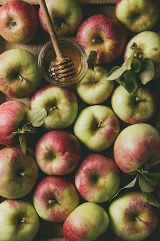 Manzanas maduras de jardinería