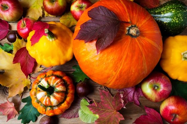 Manzanas rojas, calabazas y coloridas hojas de otoño, vista superior