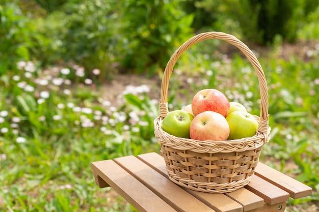 Manzanas verdes y rojas en cesta de mimbre en mesa de madera hierba verde en el jardín tiempo de cosecha