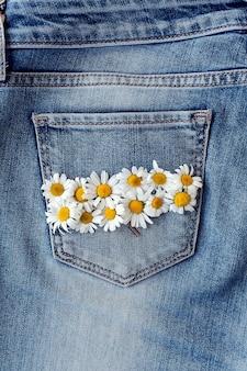 Manzanilla en bolsillo de jeans. tiro macro de estudio.