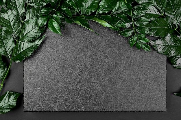 Maqueta de caja negra sobre un fondo oscuro con hojas verdes a los lados, plano, espacio para texto, vista superior