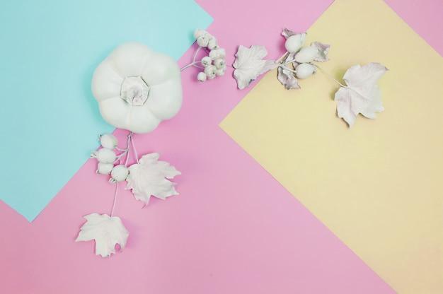Maqueta de marco blanco con calabaza, bayas y hojas en un pastel multicolor