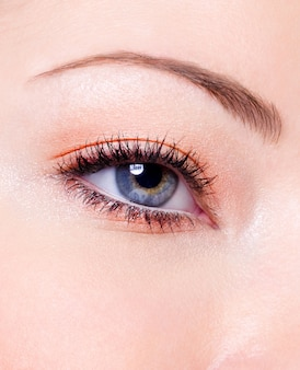 Maquillaje de moda moderno de un ojo femenino