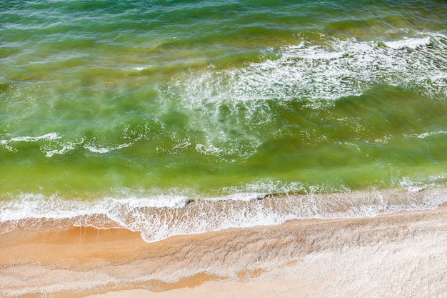 Mar, olas y surf en la costa arenosa en un día claro. vista aérea