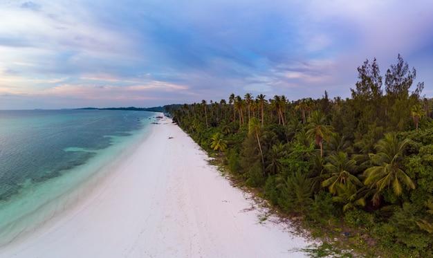 Mar tropical del caribe del filón de la isla de la playa de la visión aérea. indonesia archipiélago de las molucas, islas kei, mar de banda. destino de viaje superior, mejor buceo buceo, panorama impresionante.