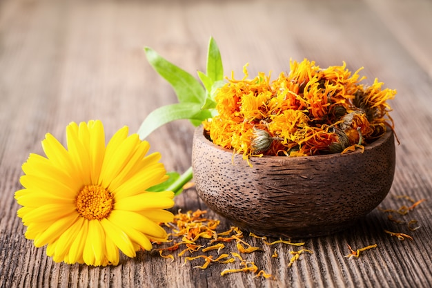 La maravilla secada y fresca (calendula) florece en un cuenco en fondo rústico de madera.