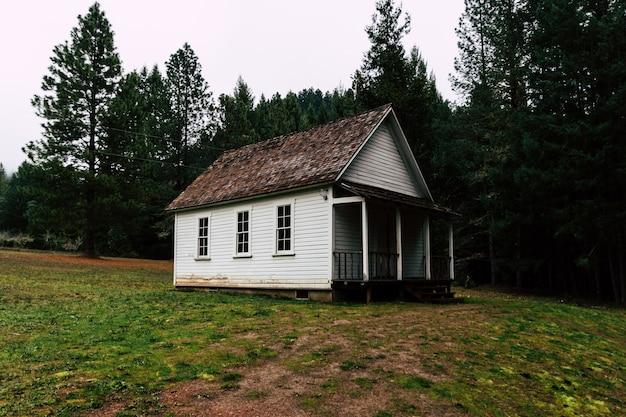 Maravillosa escena de una pequeña casa solitaria en el bosque