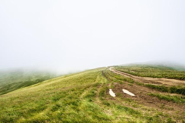 Maravillosa vista de las montañas de los cárpatos ucranianos en la niebla.
