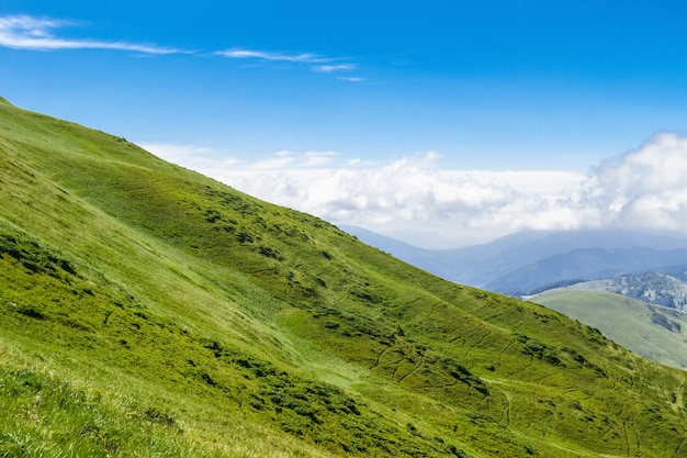Maravilloso paisaje de montañas de los cárpatos ucranianos.