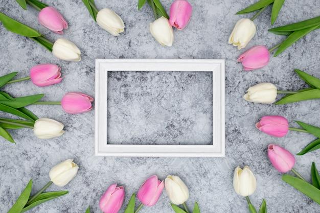 Marco blanco con hermosos tulipanes alrededor
