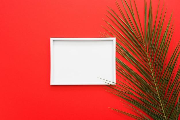 Marco blanco con hojas de palmera en superficie roja brillante