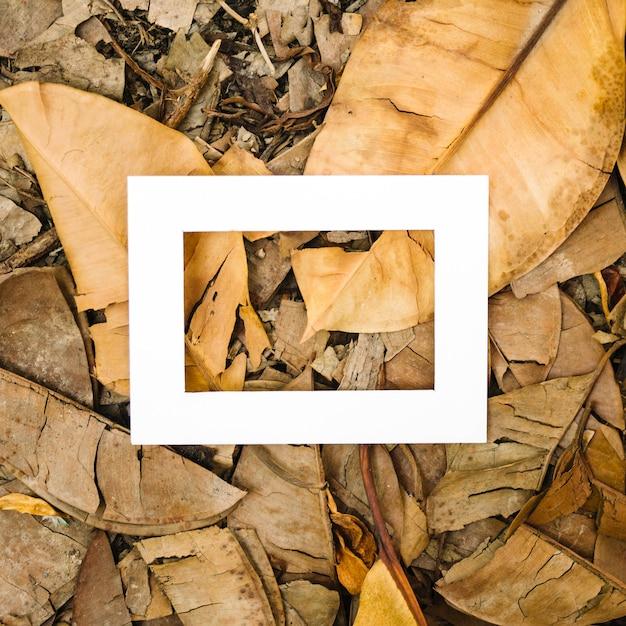Marco blanco vacío sobre hojas de otoño