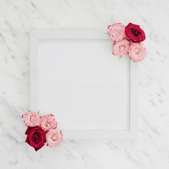 Marco en blanco con vista superior de rosas