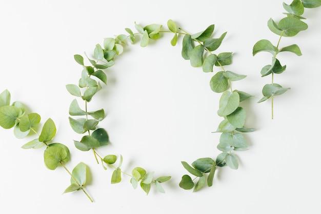 Marco de boda hecho con hojas aisladas sobre fondo blanco