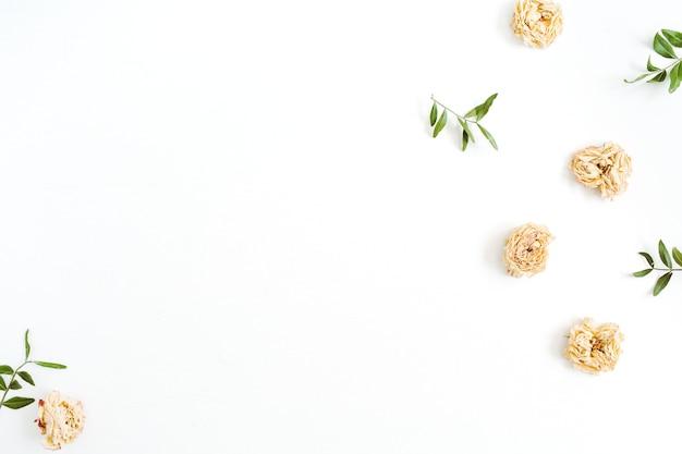 Marco de borde de flores de rosas beige pastel secas en blanco