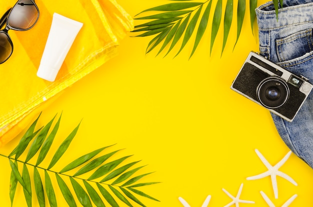 Marco de cámara, gafas de sol y hojas de palmera.