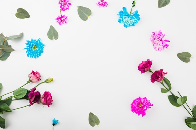 Marco circular hecho con flores sobre fondo blanco