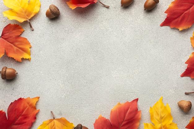 Marco circular de vista superior con hojas y bellotas