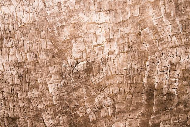 Marco completo de fondo con textura de madera