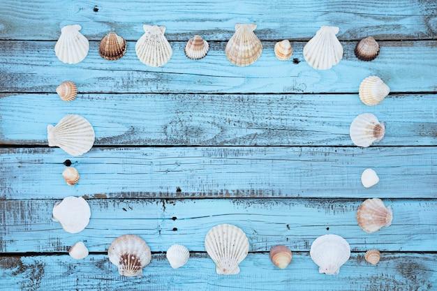 Marco de conchas marinas planas en tablero de madera
