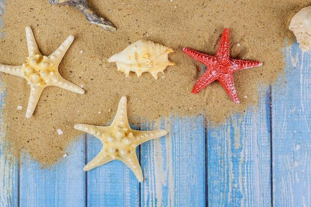 Marco de conchas marinas de vacaciones de verano en tablero de madera