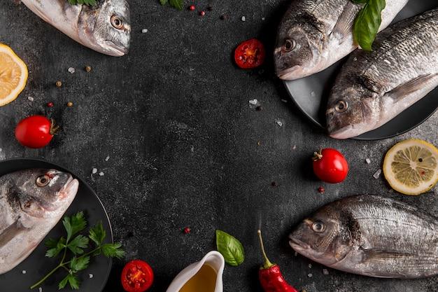 Marco del espacio de copia de pescado de vista superior