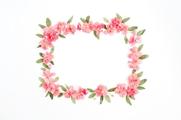 Marco floral de flores de hortensia rosa, hojas verdes, ramas en blanco