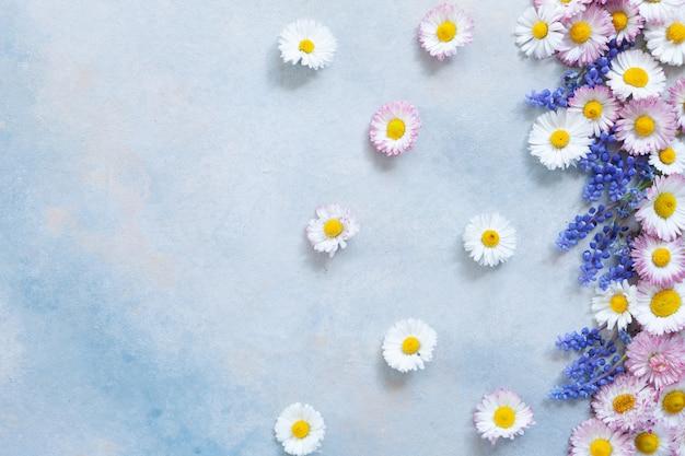 Marco floral de margaritas y muscari.