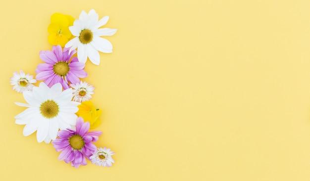 Marco floral plano laico con fondo amarillo
