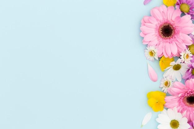 Marco floral plano laico con fondo azul